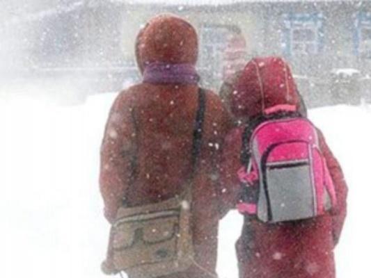 ВЧелябинске 24января отменены занятия вшколах